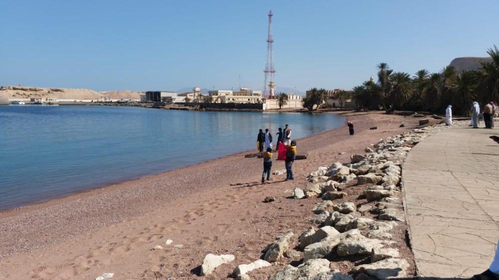 جانب من تنظيف الشواطئ (الوطن)