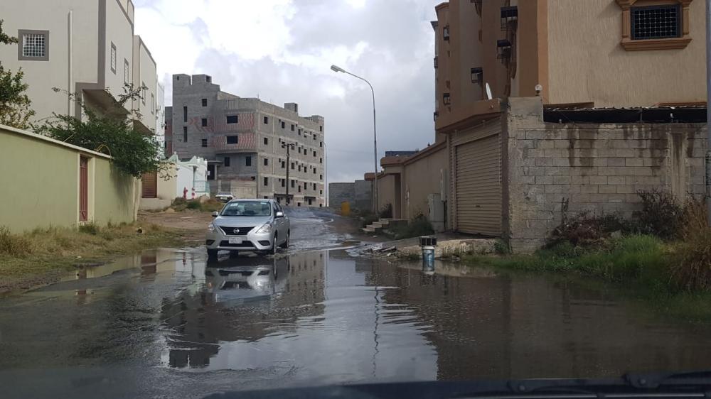 (تصوير: ماجد آل نازح)