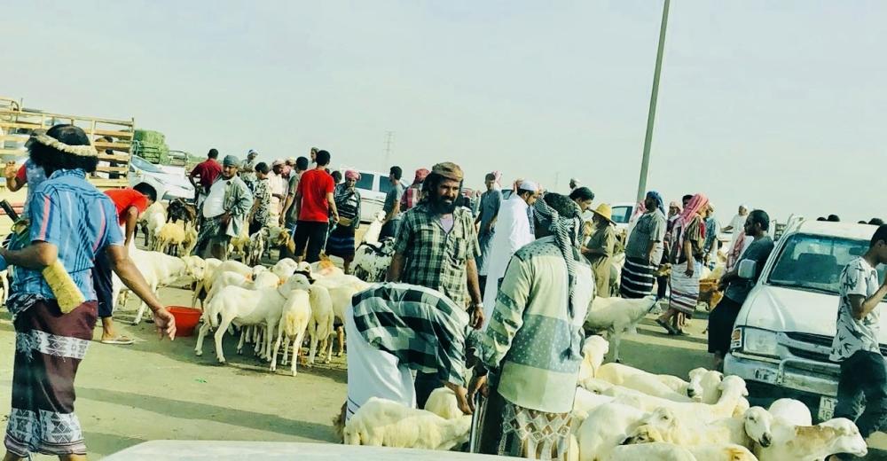 زيادة الطلب اسواق صبيا( تصوير: يحيى كميت)