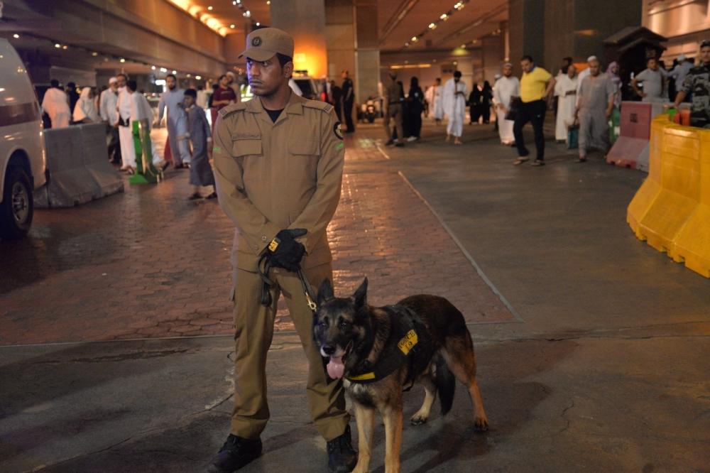 الـk9 الكلاب البوليسية أحد أهم الأجهزة الكشف الحية في الموقع (تصوير: عمران محمد)
