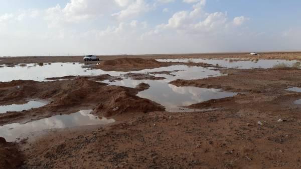 الأمطار شجعت الأهالي للتنزه في براري طريف (الوطن)