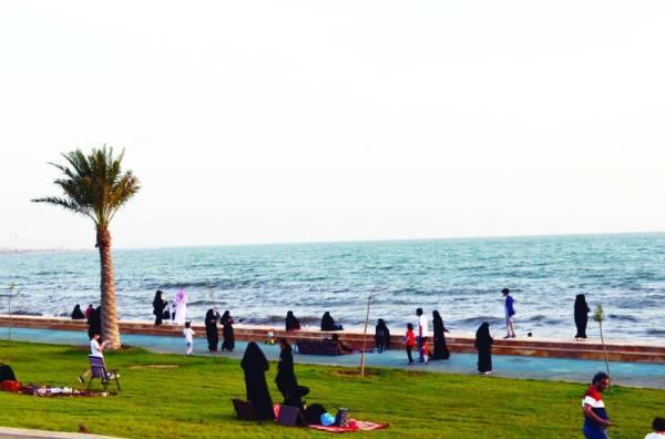 (تصوير: ماجد آل زاهم)