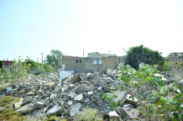العشيمة  (تصوير: يحيى مدخلي)