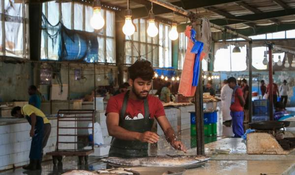 الوضع مطمئن في القطيف وفي الصورة عمالة تمارس نشاطها في بيع السمك (أ ف ب)
