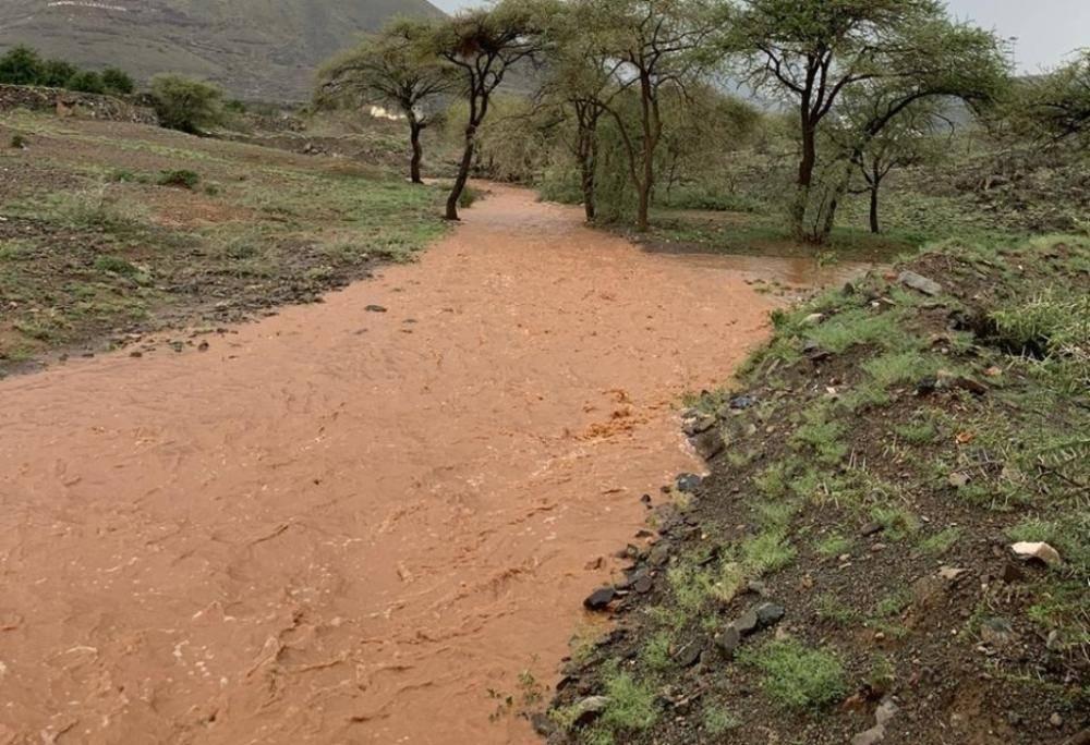جانب من سيول وأمطار الحرجة أمس (تصوير: سلمان آل مقرح)