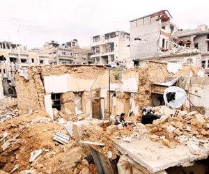 نوبة قلبية تعجل بخلاص الأسد من مخزن أسراره