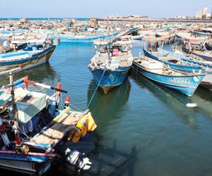 الحوثي يزعم انحياز كامرت للتملص من اتفاق السويد
