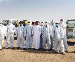 البيئة تواصل مكافحة الجراد الصحراوي