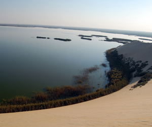 البيئة توافق على تحويل بحيرة الأصفر إلى محمية طبيع