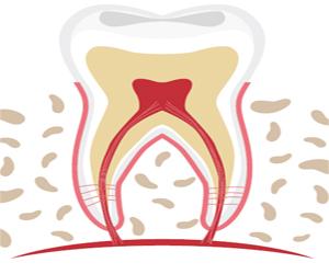 توطين 21800 وظيفة طبيب أسنان حتى 2027