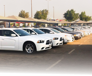 %75 زيادة في أسعار  التأمين على سيارات التأجير