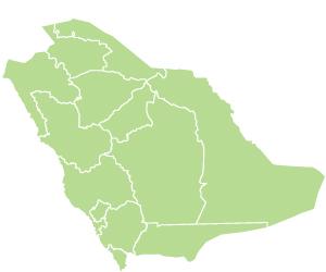 40 % من أنفاق المملكة  في عسير
