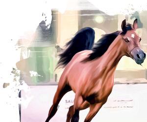 عنيزة تحتضن مسابقة جمال الخيل العربية الثانية