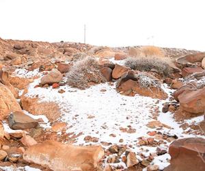 ثلوج بـ 3 مناطق و20 مارس نهاية البرد