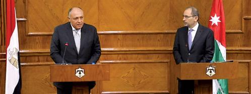 شكري: قطر تخالف الإجماع العربي وقمة الرياض ستتصدى
