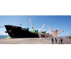 خبراء إيرانيون يفخخون ميناء الحديدة