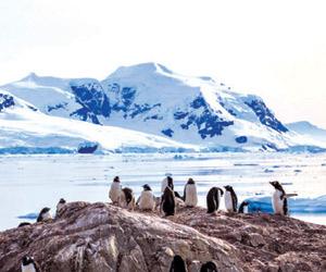 العثور على 91 بركانا في القارة القطبية الجنوبية