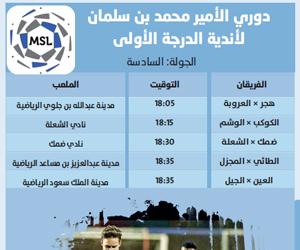 دوري الأمير محمد بن سلمان لأندية الدرجة الأولى